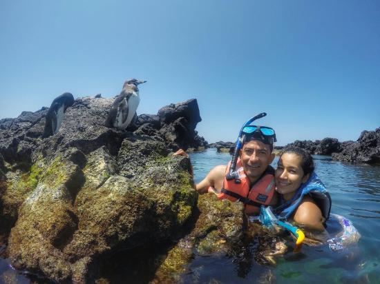 Пуерто-Вильямиль, Эквадор: En mi visita a los Túneles de Isabela