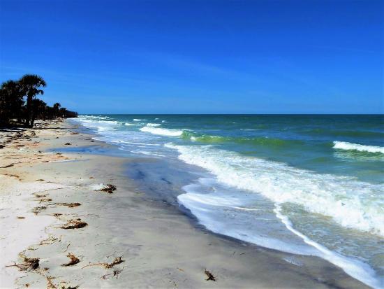 Данидин, Флорида: Gods beach
