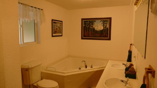 Lynn View Lodge & Cabins: Suite bathroom