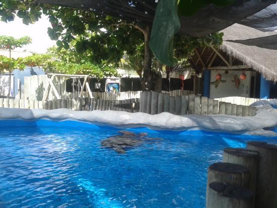 Oceanario de Aracaju