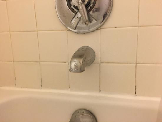 Courtyard Shelton: Disappointed for seeing this in the bathroom... This only takes few buck to fix it but apparentl