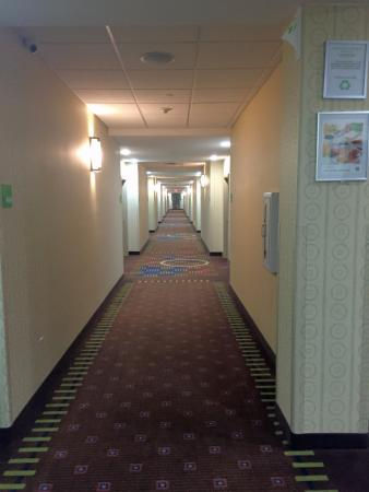 Holiday Inn & Suites Waco Northwest: Hallway