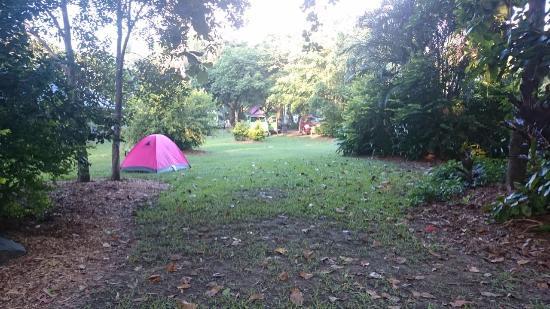 NRMA Cairns Holiday Park: Camping