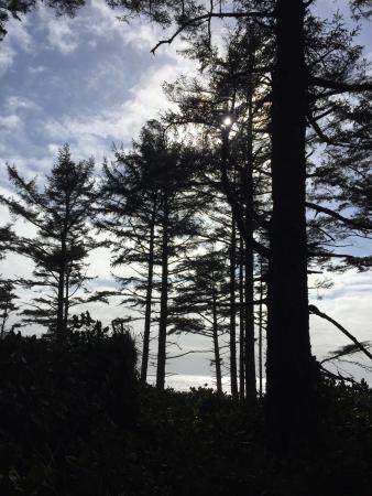 Cape Lookout State Park: photo1.jpg