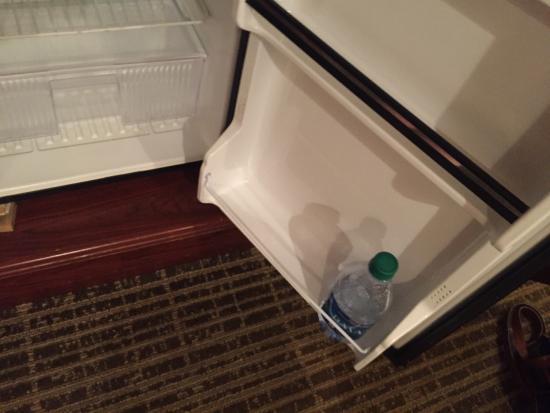 Baymont Inn & Suites Jacksonville: 3rd floor and elevator reeked of weed, looked like burn marks on bathtub, trash left in fridge,