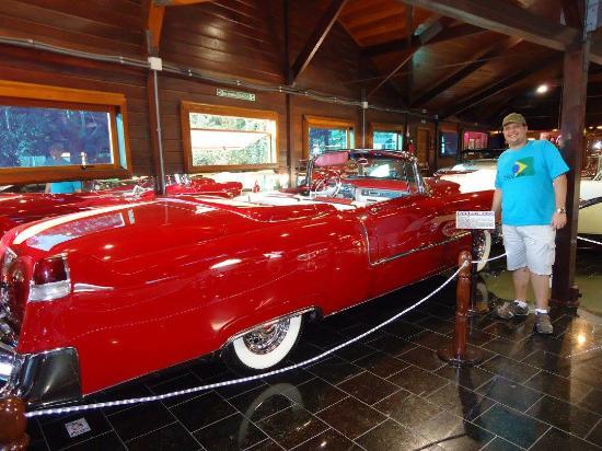 carr o picture of museu do automovel hollywood dream cars rh tripadvisor co za
