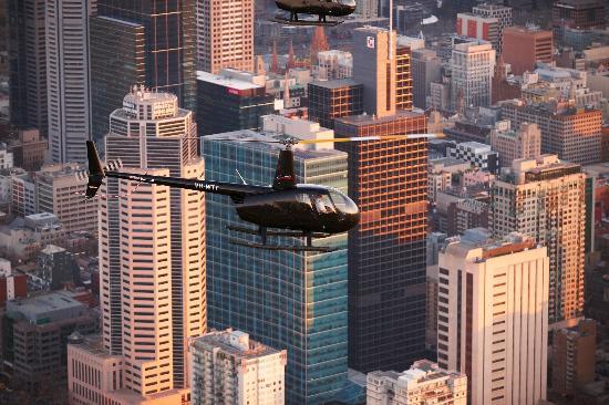 Essendon, Australia: City Scenic Flight