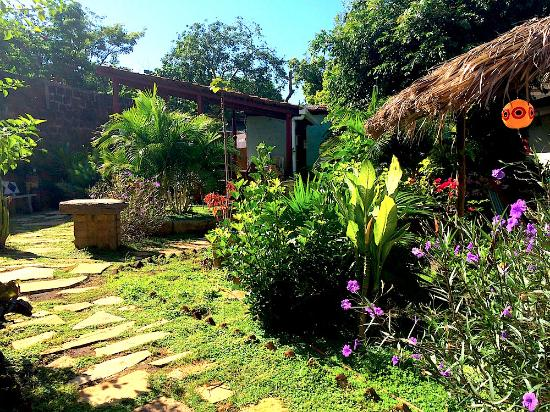 Harvest House Nicaragua: View from the front door of one of the garden rooms in the back