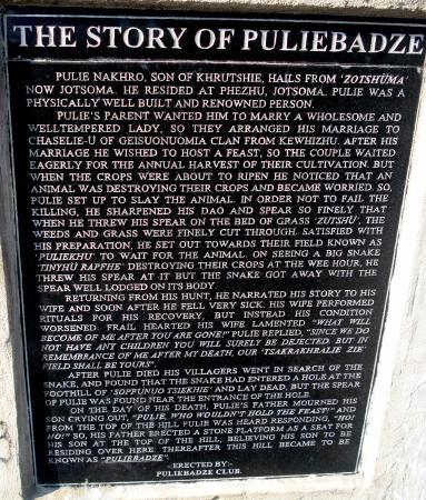 Pulie Badze