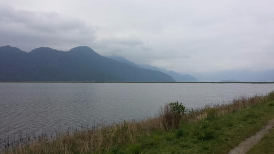 Pitt Meadows, Canadá: Lake and mountain view from Pitt Polder