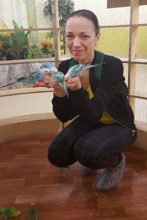 Touching Zoo Lesnoye Posolstvo