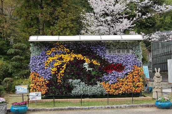 nagoya zoo & botanical garden - Picture of Higashiyama Zoo & Botanica...
