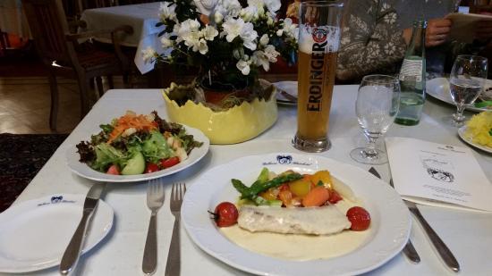 Le Bristol: Seelachs mit Gemüse und Salat (Sonderzusammenstellung)