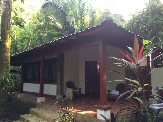 Belize Tree Houses: Belize Tree House at Cave Branch