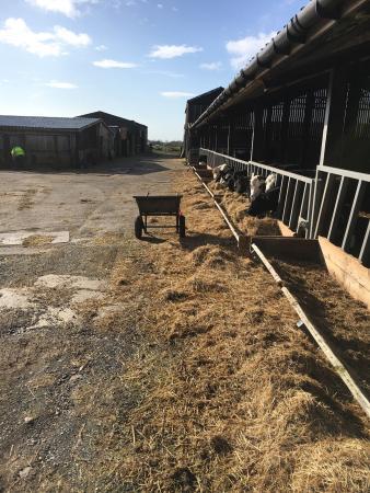 Isles Field Barn: photo0.jpg