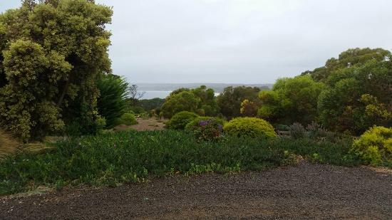 Emu Bay Holiday Homes: My view from holiday home 3