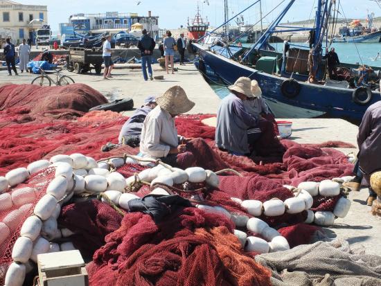 Legendes Evasions - Day Tours: Fisherman of Essaouira