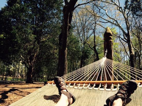 Huntsville, AL: defying gravity