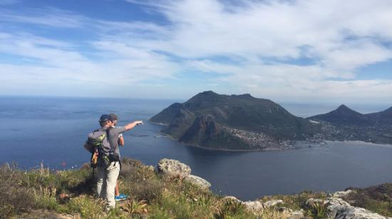 Cape Town Hiking with Tim Lundy -  Tours: Standing on top of Chapman's Peak, looking down at Hout Bay