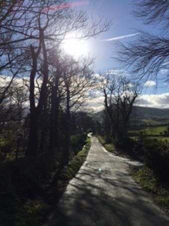 Tavnaghoney Cottages: Tiveragh, the Fairy Hill