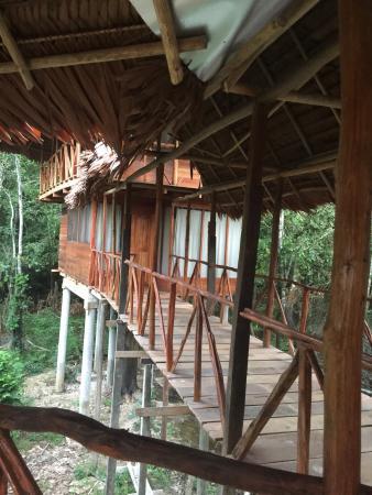写真Amazonia Expeditions' Tahuayo Lodge枚