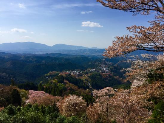Nara Prefecture, Japón: photo2.jpg