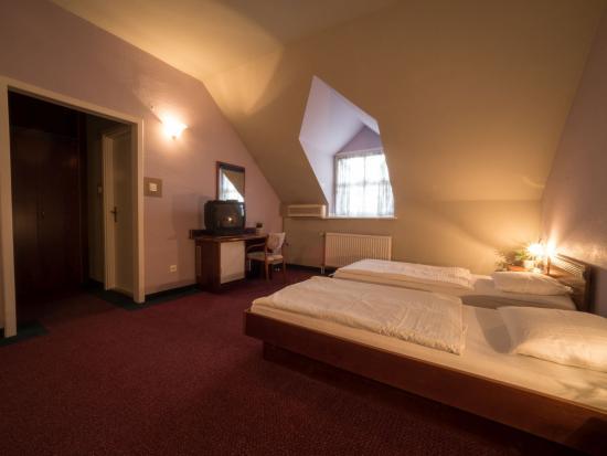 Alsoors, Węgry: Hotel Aranysas szoba