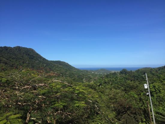 Ceiba, Пуэрто-Рико: photo3.jpg