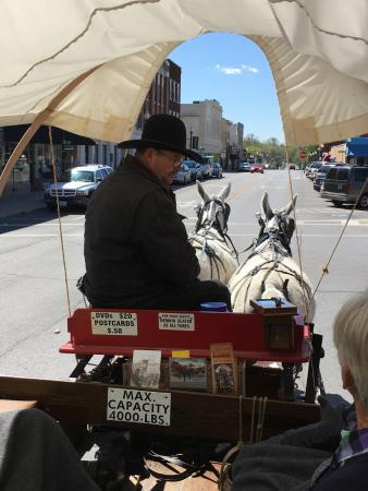 Pioneer Trails Adventures : Mule team headed through streets of Independence!