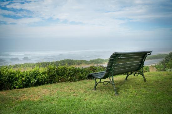 Beachview, Sudáfrica: Garden overlooking the sea