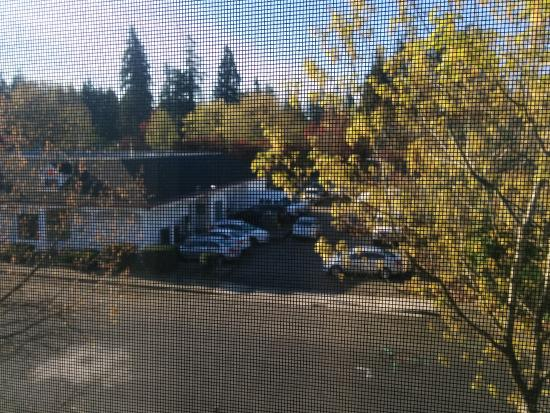 Redmond, WA: View from room