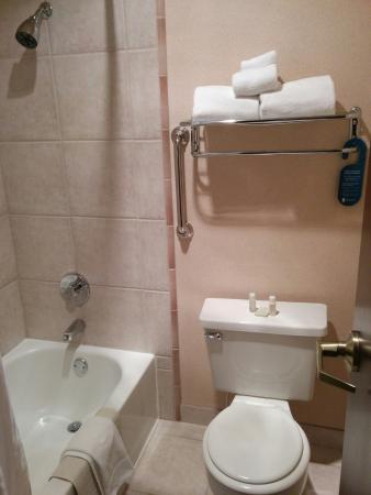 Redmond, WA: small bath area