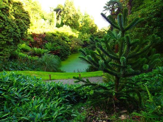 St Austell, UK: Gorgeous Greenery!