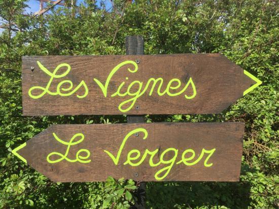 Petit tang romantique photo de le jardin d 39 elis e - Petit jardin romantique tours ...