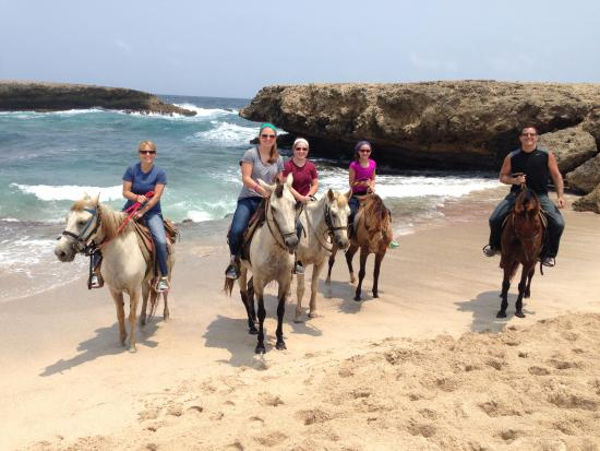 The Gold Mine Ranch Horseback Riding Tours Great Family Photo Op On Beach In