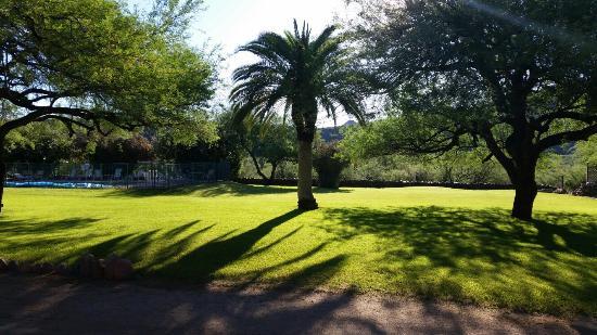 Saguaro Lake Guest Ranch: TA_IMG_20160411_074234_large.jpg