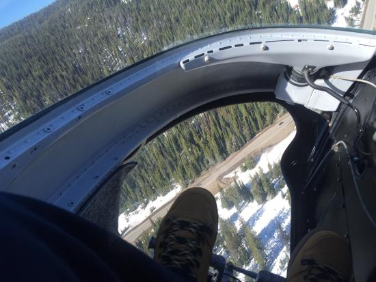 West Kelowna, แคนาดา: We had the the most AMAZING time flying with Valhalla Heli at Silverstar mountain .The pilot Chr