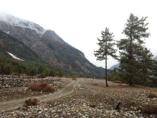 Hotel Rupin River View: nearby walk