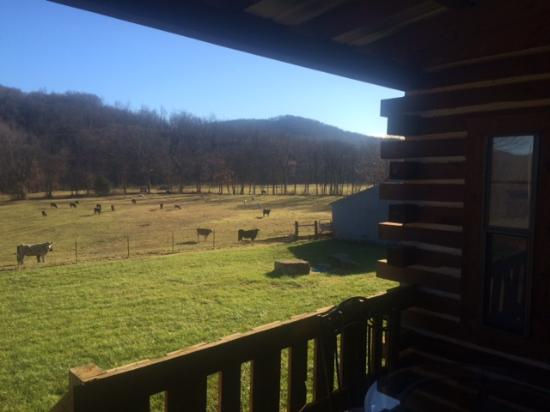 Combs, AR: View from one porch