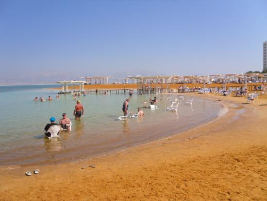 the beach at the hod hamidbar resort and spa hotel on the dead sea rh tripadvisor co za where is the dead sea located on a map