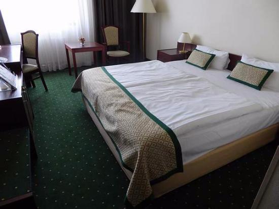 بست وسترن هوتل هنجاريا: Room 775