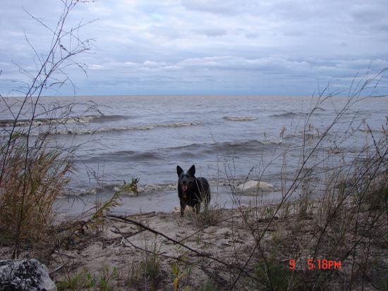 Cleveland, วิสคอนซิน: Cerci at Lake Michigan