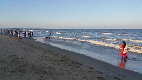Breezy Beach : 20160409_174823_large.jpg