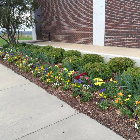Natchez, MS: Flowers blooming were a welcome site!
