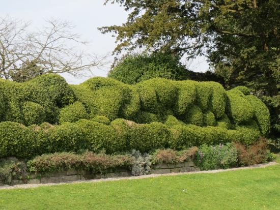Kendal, UK: Garden topiary detail