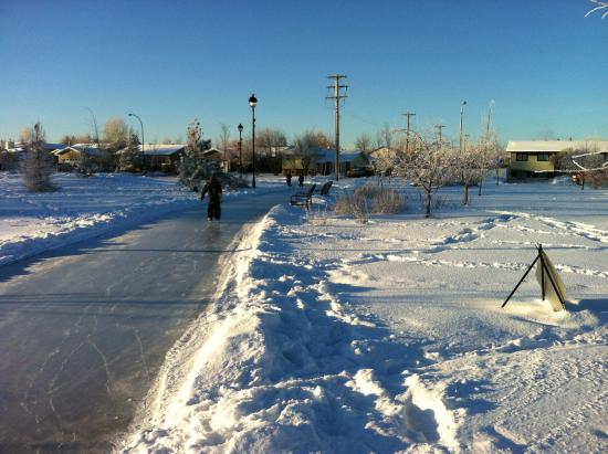 Golden Jubilee Park: Going for a skate on the path