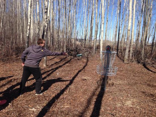 High Level, Canada: Community Park now has Disc Golf