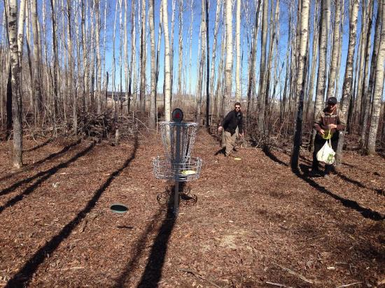 High Level, Canada: New Disc Golf Course