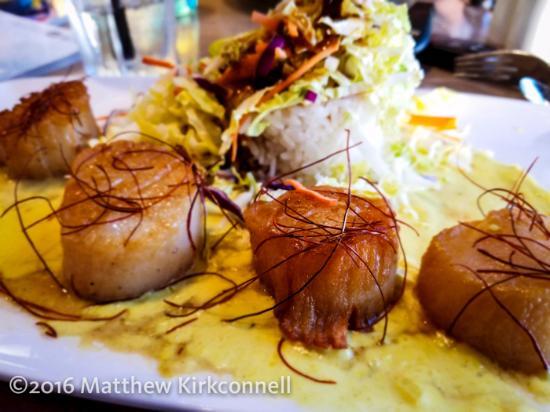 Moclips, Etat de Washington : My husband's dinner, the curried scallops.