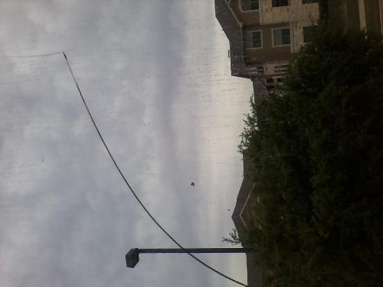 Roanoke, TX: broken window that does not exist!